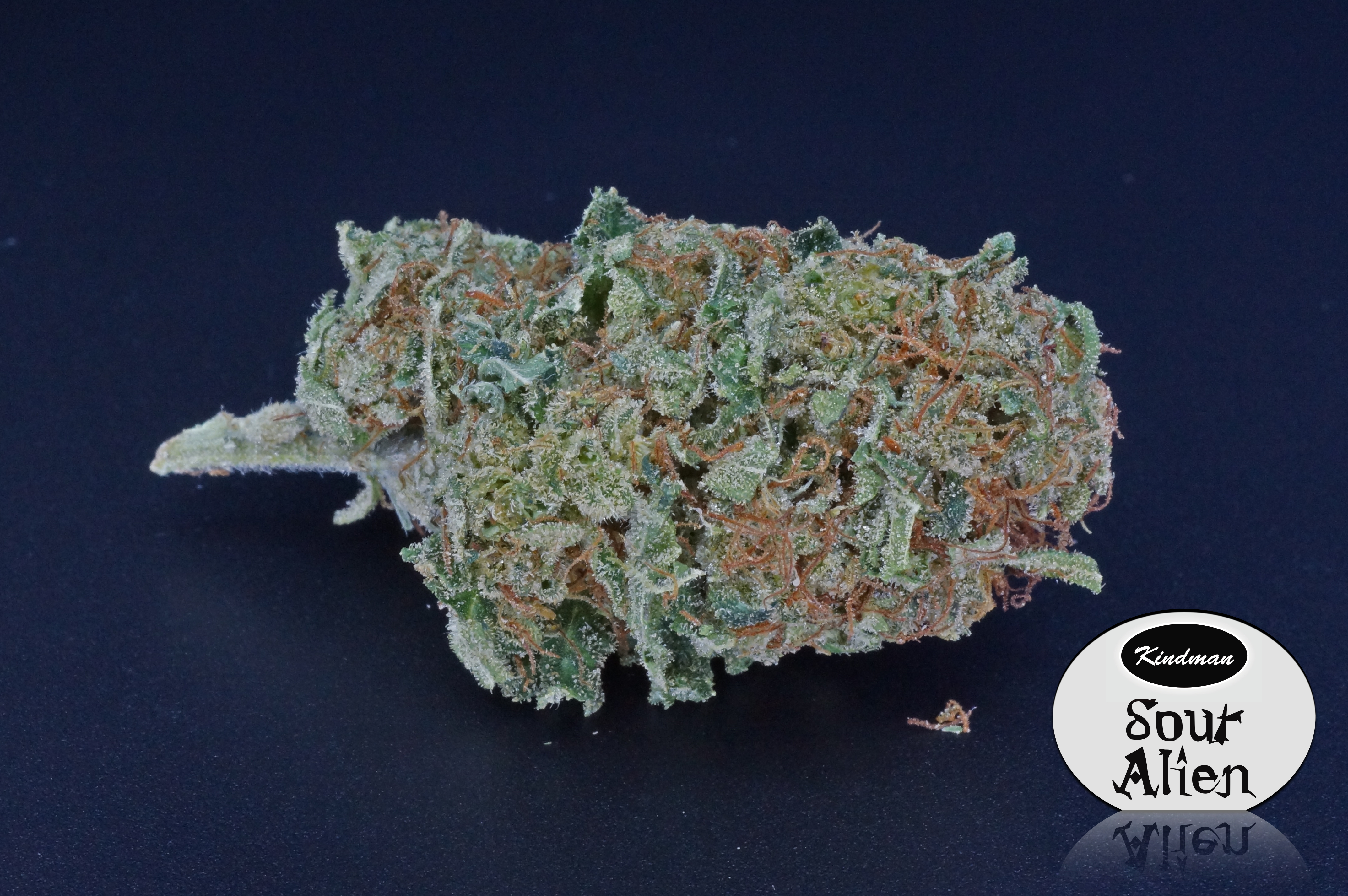 Uncategorized | Legal Dispensary Products | Page 3